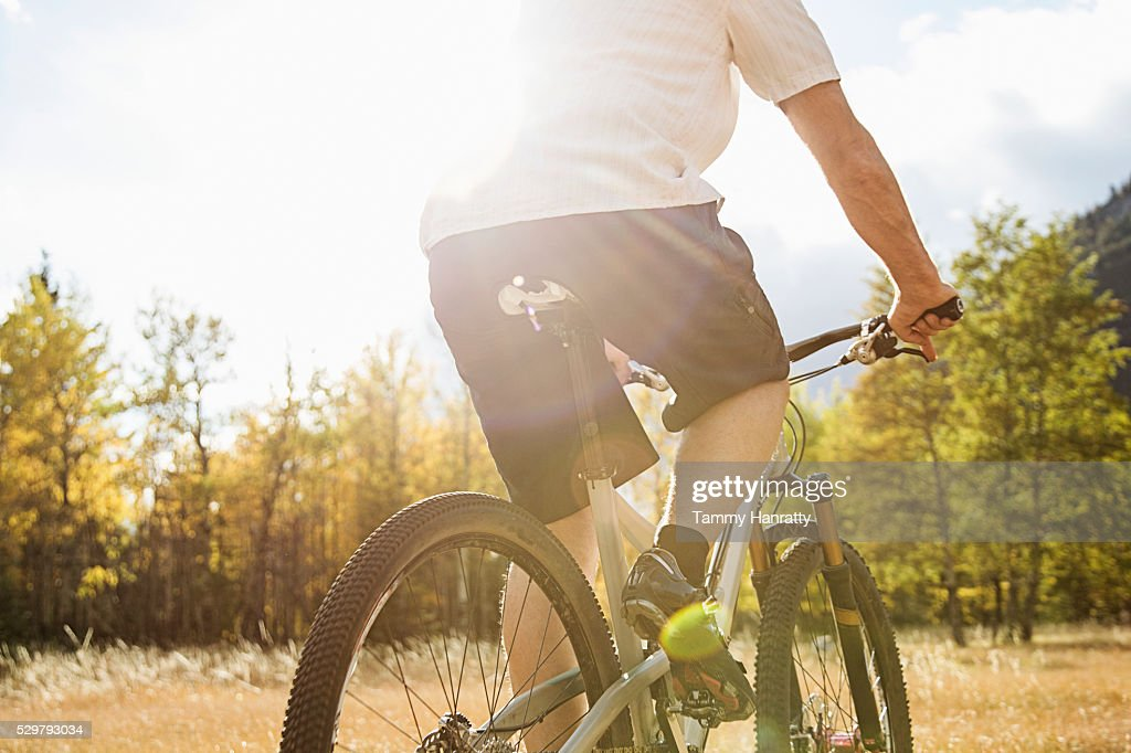 Cyclist riding in forest : Photo
