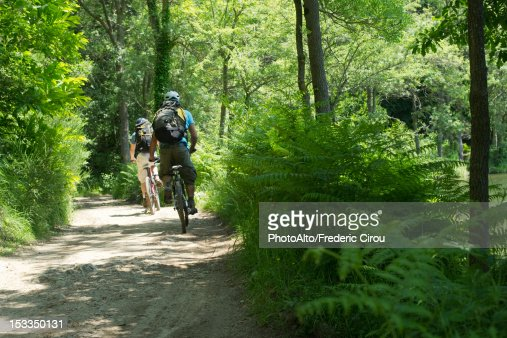 Cyclists biking through woods, rear view : Stock Photo