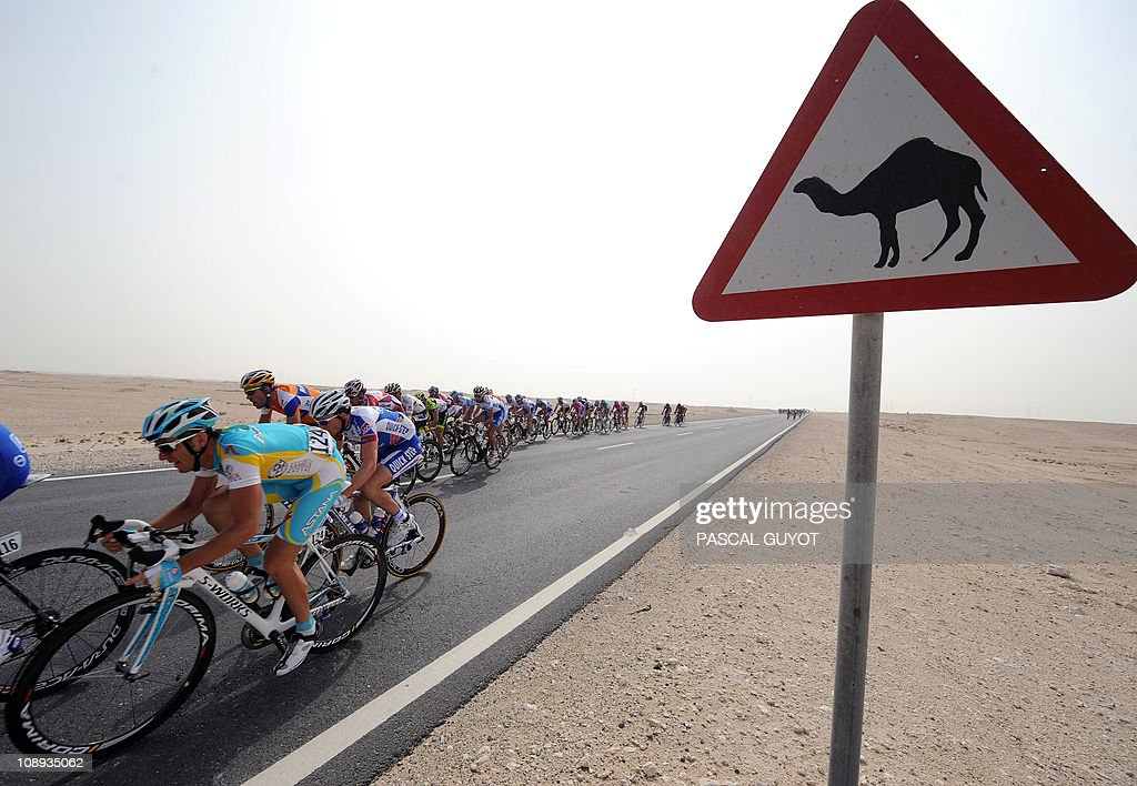 Cyclists compete past a camel crossing road sign during the 150,5 km third stage run from Al Wrakra to Mesaieed during the 2011 Tour of Qatar cycling race on February 9, 2011.