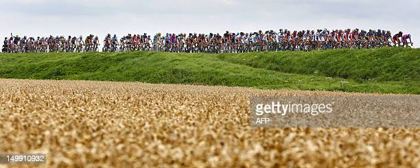 Cyclists taking part in the Eneco Tour Cycling Race ride through the fields during the first stage from Waalwijk to Middelburg on August 6 2012...