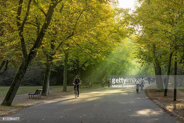 Cyclists through Vondelpark in morning