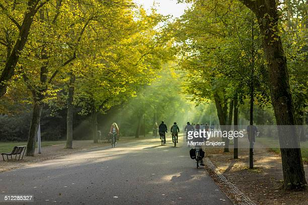 Cyclists through Vondelpark in morning