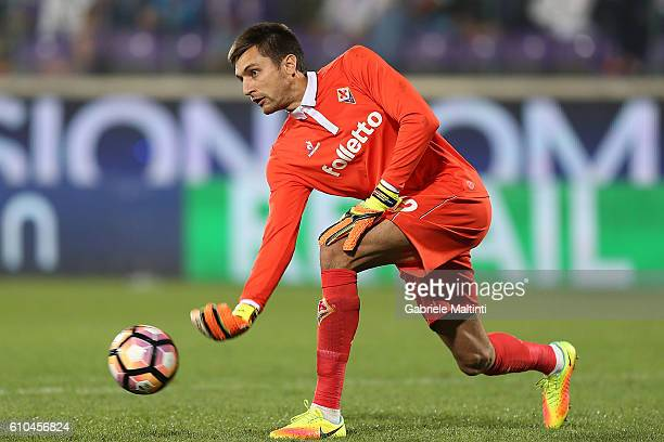 Cyprian Tatarusanu of ACF Fiorentina in action during the Serie A match between ACF Fiorentina and AC Milan at Stadio Artemio Franchi on September 25...