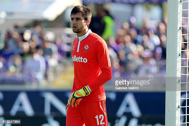 Cyprian Tatarusanu of ACF Fiorentina in action during the Serie A match between ACF Fiorentina and Atalanta BC at Stadio Artemio Franchi on October...
