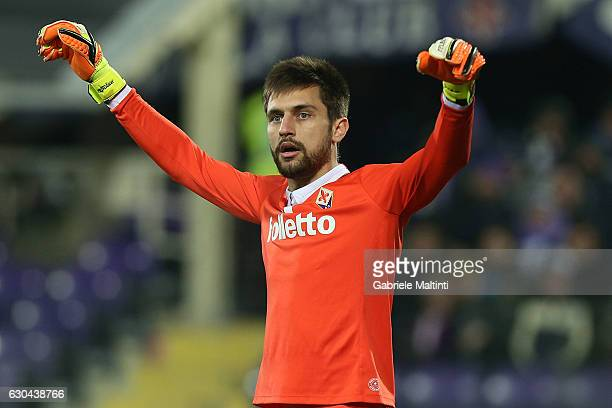 Cyprian Tatarusanu of ACF Fiorentina in action during the Serie A match between ACF Fiorentina and SSC Napoli at Stadio Artemio Franchi on December...