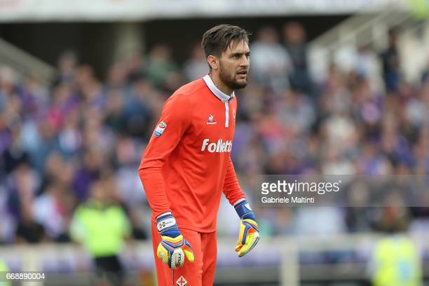 Cyprian Tatarusanu of ACF Fiorentina in action during the Serie A match between ACF Fiorentina and Empoli FC at Stadio Artemio Franchi on April 15...