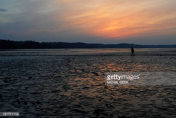 A Czech fisherman walks across an empty side of the pond early in the morning on November 7 during the annual carp fishing season at the Bosilecky...