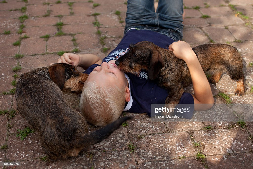 Dachshund sleeping with boy on ground : Stock Photo