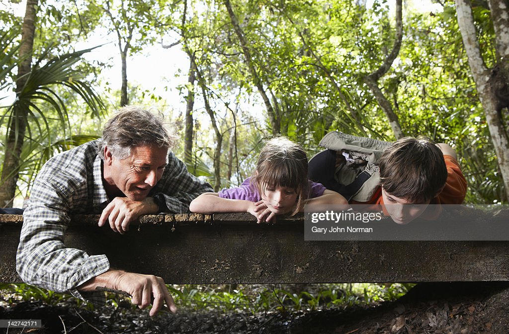 Dad and children explore woodland. : Stock Photo