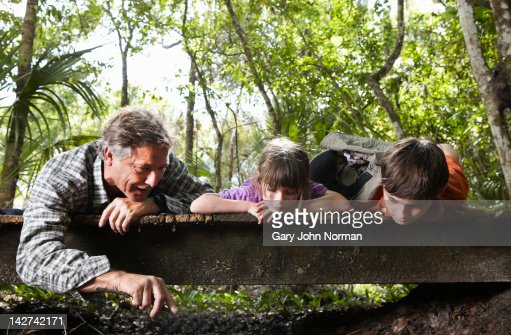 Dad and children explore woodland. : Stock Photo