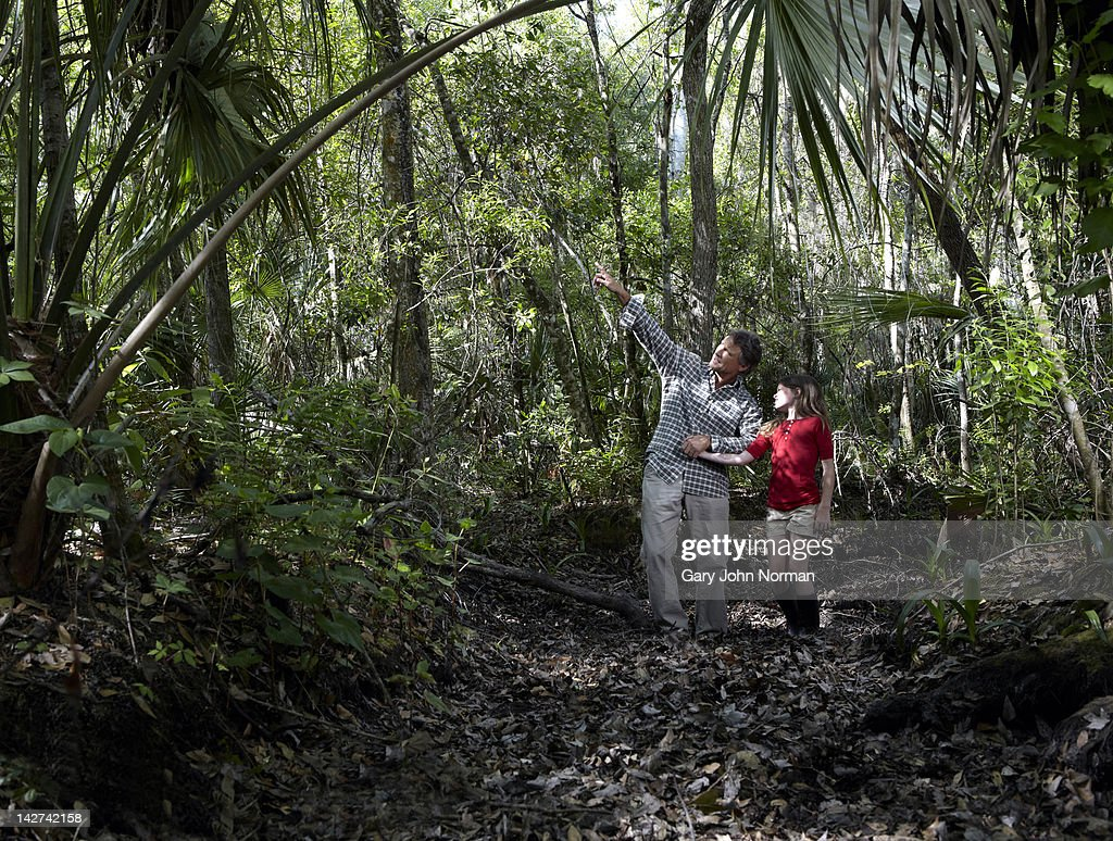 Dad and young daughter explore woodland. : Stock Photo