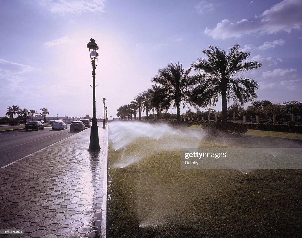 Daily irrigation of roadside garden in Sharjah, UAE.