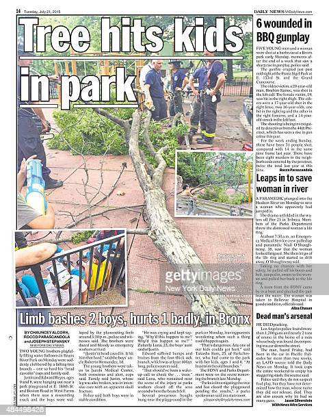 Daily News page 14 July 21 Headline Tree hits kids in park Limb bashes 2 boys hurts 1 badly in Bronx Two young borthers playfully filling water...