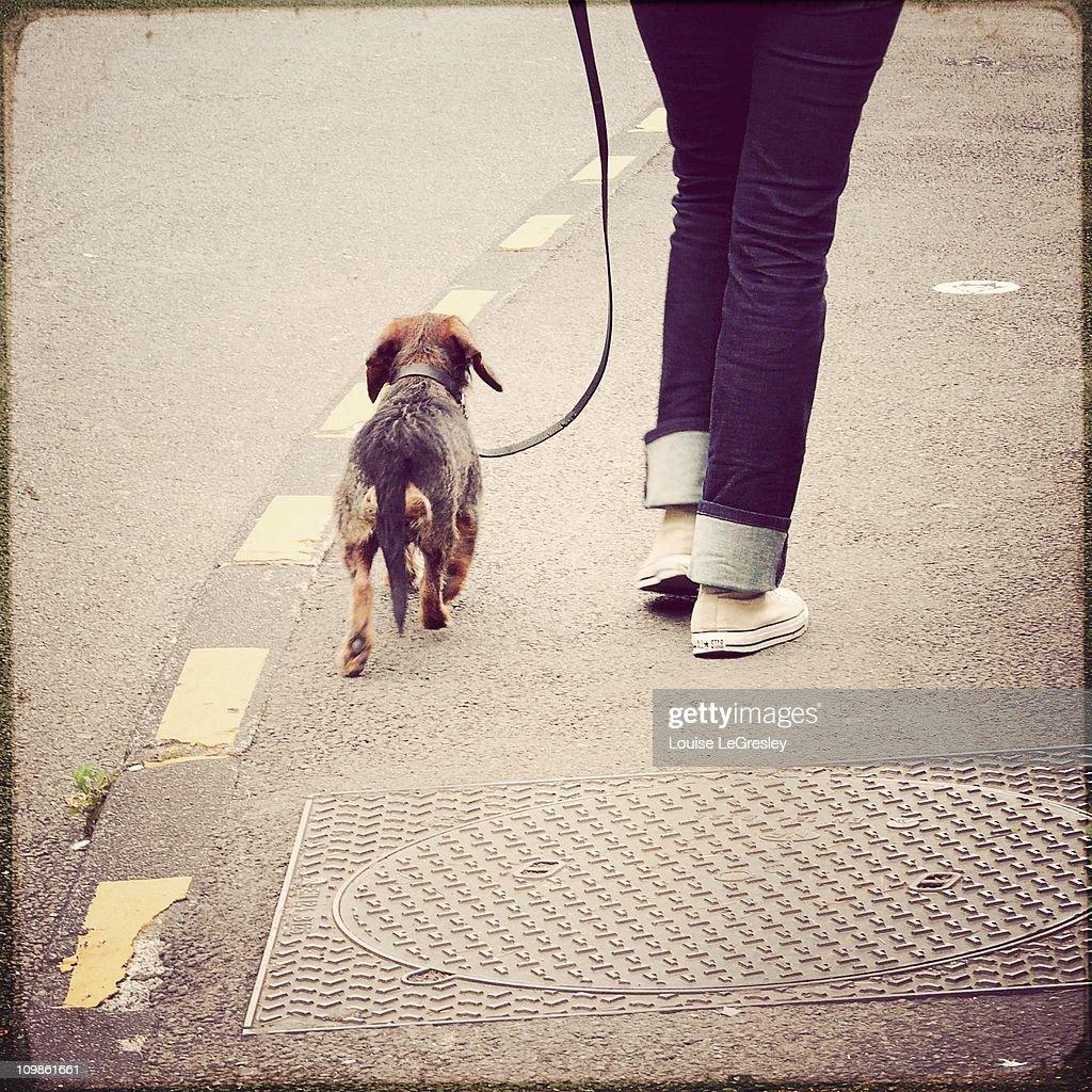 Daily walk : Stock Photo