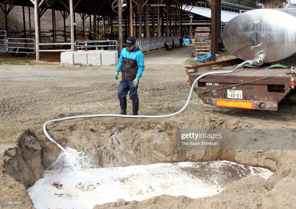 A dairy farmer pours away milk into a ditch on March 22, 2011 in Kawamata, Fukushima, Japan. The Japanese government ordered Fukushima Prefecture to suspend the shipment of milk after radioactive iodine exceeding the government-regulated limit was found. The 9.0 magnitude strong earthquake struck offshore on March 11 at 2:46pm local time, triggering a tsunami wave of up to ten metres which engulfed large parts of north-eastern Japan, and also damaging the Fukushima nuclear plant and threatening a nuclear catastrophe. The death toll continues to rise with numbers of dead and missing exceeding 20,000 in a tragedy not seen since World War II in Japan.
