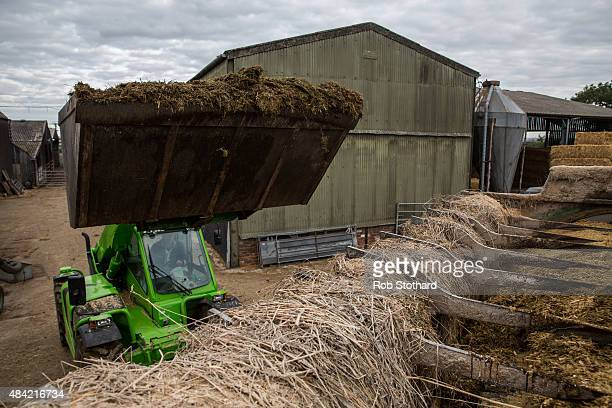 Dairy farmer Tim Whittaker adds grass silage to a mixture of rolled wheat soya rape extract molasses maze silage and chopped straw to feed cows at...