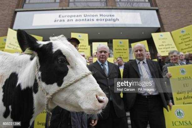 Dairy farmers demonstrate at the EU office in Dublin today in protest at the collapse in milk prices