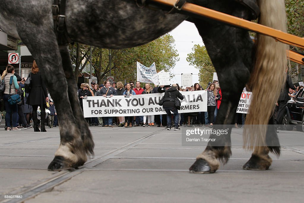 Dairy Farmers march through the streets to Parliament House on May 25, 2016 in Melbourne, Australia. The Federal Government is expected to announce an assistance package for dairy farmers, who have been struggling due to falling milk prices in recent months.