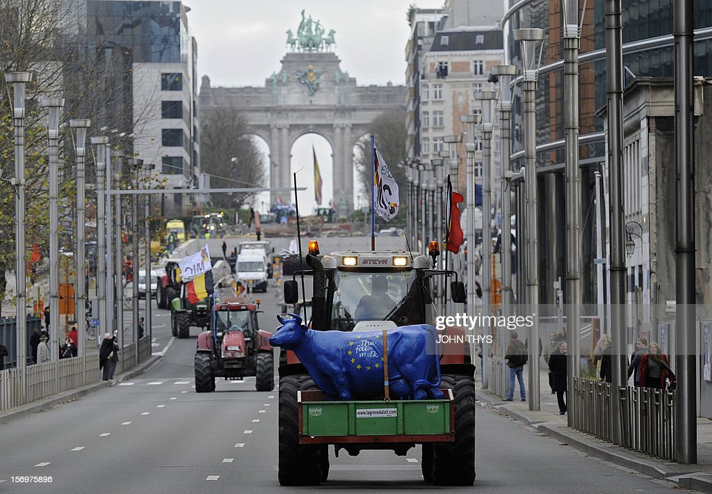 Dairy farmers stage a protest against EU agricultural policies, near the European Parliament, in Brussels, on November 26, 2012. Farmers demonstrated today with their tractors and fake cows in front of the European Parliament in Brussels to protest against falling milk prices caused by overproduction in Europe. AFP PHOTO / JOHN THYS
