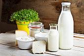 dairy products cheese yoghurt milk