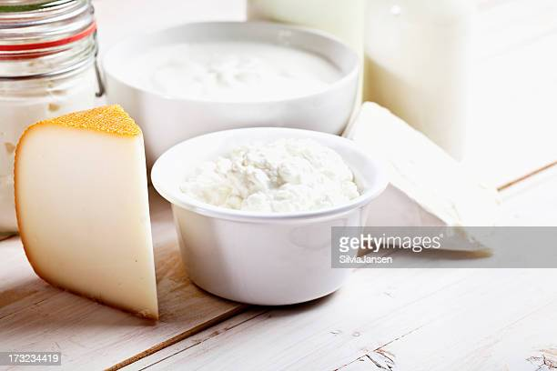 dairy products cheese yoghurt milk