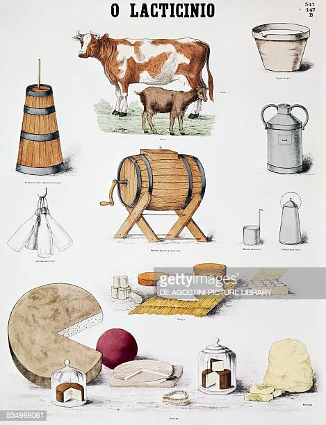 Dairy products educational posters France 20th century