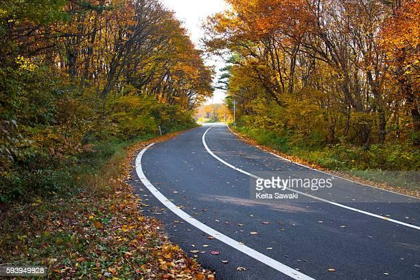 Daisen Kanjo Road, Tottori Prefecture, Honshu, Japan