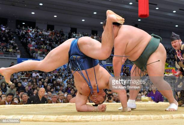 Daishomaru throws Ishiura to win during day five of the Grand Sumo Spring Tournament at Edion Arena Osaka on March 16 2017 in Osaka Japan