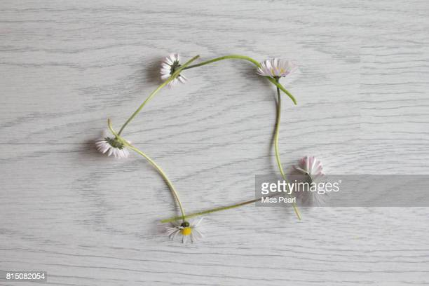 Daisy chain displayed on a table top