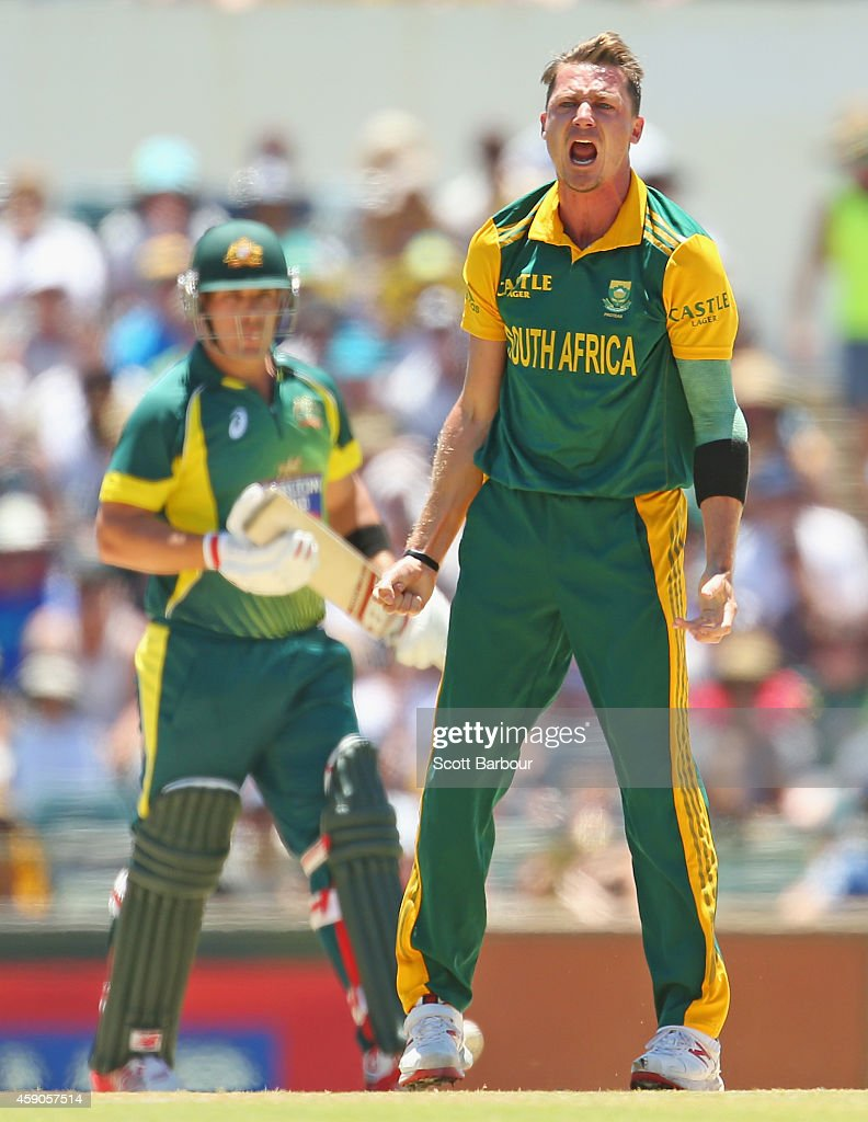 <a gi-track='captionPersonalityLinkClicked' href=/galleries/search?phrase=Dale+Steyn&family=editorial&specificpeople=649553 ng-click='$event.stopPropagation()'>Dale Steyn</a> of South Africa celebrates after dismissing <a gi-track='captionPersonalityLinkClicked' href=/galleries/search?phrase=Aaron+Finch&family=editorial&specificpeople=724040 ng-click='$event.stopPropagation()'>Aaron Finch</a> of Australia during the One Day International match between Australia and South Africa at WACA on November 16, 2014 in Perth, Australia.