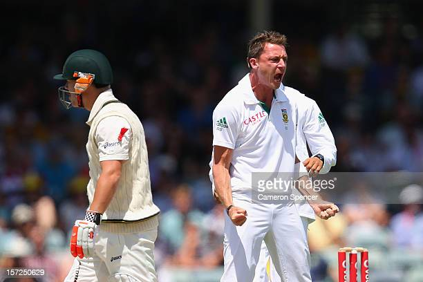 Dale Steyn of South Africa celebrates dismissing David Warner of Australia during day two of the Third Test Match between Australia and South Africa...