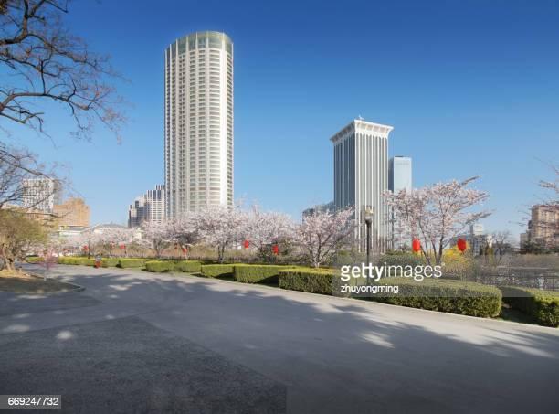 Dalian cityscape