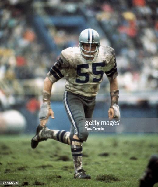 Dallas Cowboys linebacker Lee Roy Jordan in puruit of a ball carrier in a 4937 win over the Buffalo Bills on September 191971 at War Memorial Stadium...