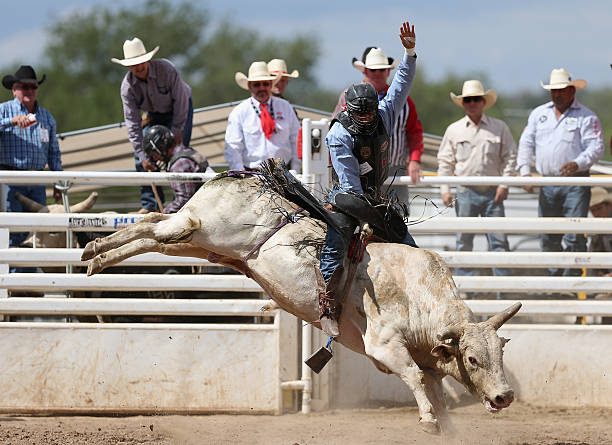 Prescott Frontier Days Quot World S Oldest Rodeo Quot Photos And