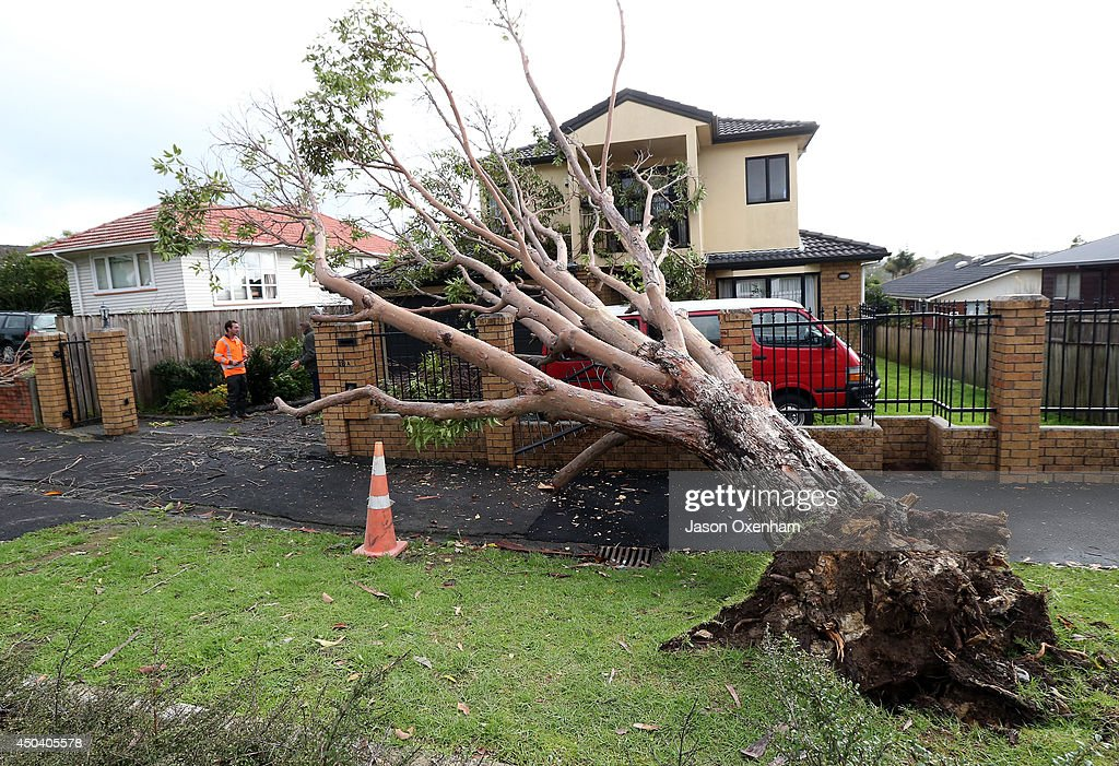 Damage from a fallen tree on the property of Pravindra Singh on Terry Street, Blockhouse Bay on June 11, 2014 in Auckland, New Zealand. Cyclonic winds and heavy rainfall has caused damage across Auckland, Northland and Waikato. Storms resulted in wide ranging power outages and property damage.