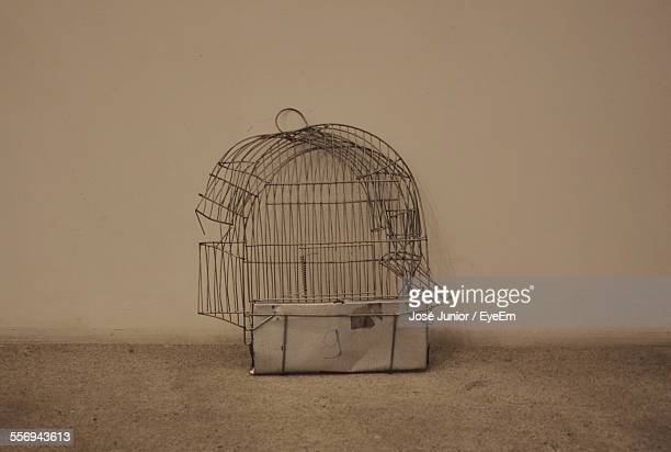 Damaged Cage At Home