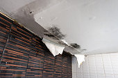 Damaged ceiling from rain water leak
