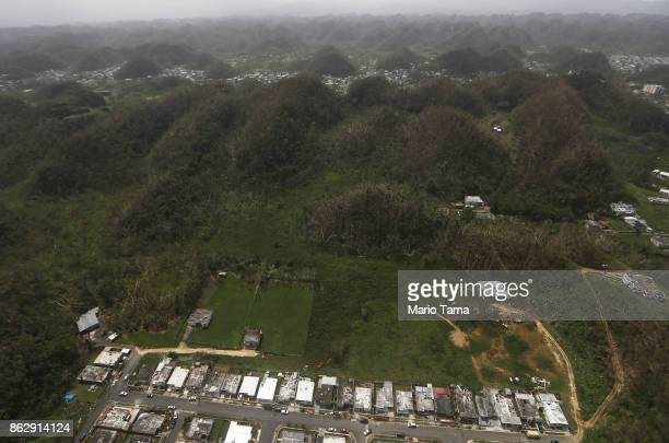 Damaged structures are viewed from the air amidst damaged trees during recovery efforts four weeks after Hurricane Maria struck on October 18 2017...