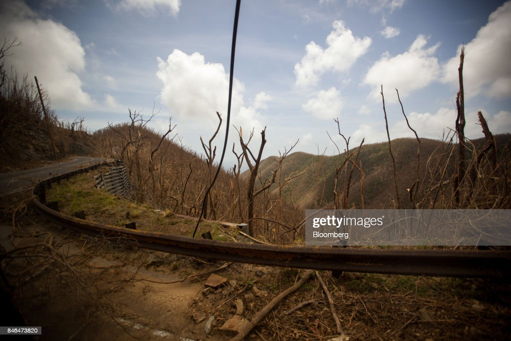 Damaged tree branches lay on the ground after Hurricane Irma in St John, U.S. Virgin Islands, on Tuesday, Sept. 12, 2017. After being struck by Irma last week, the U.S. Virgin Islands couldn't look less like a tourist destination. Many local residents are giving up and getting out after losing everything to the category 5 storm,even as the local authorities in the U.S. territory say they are determined to rebuild the islands. Photographer: Michael Nagle/Bloomberg via Getty Images