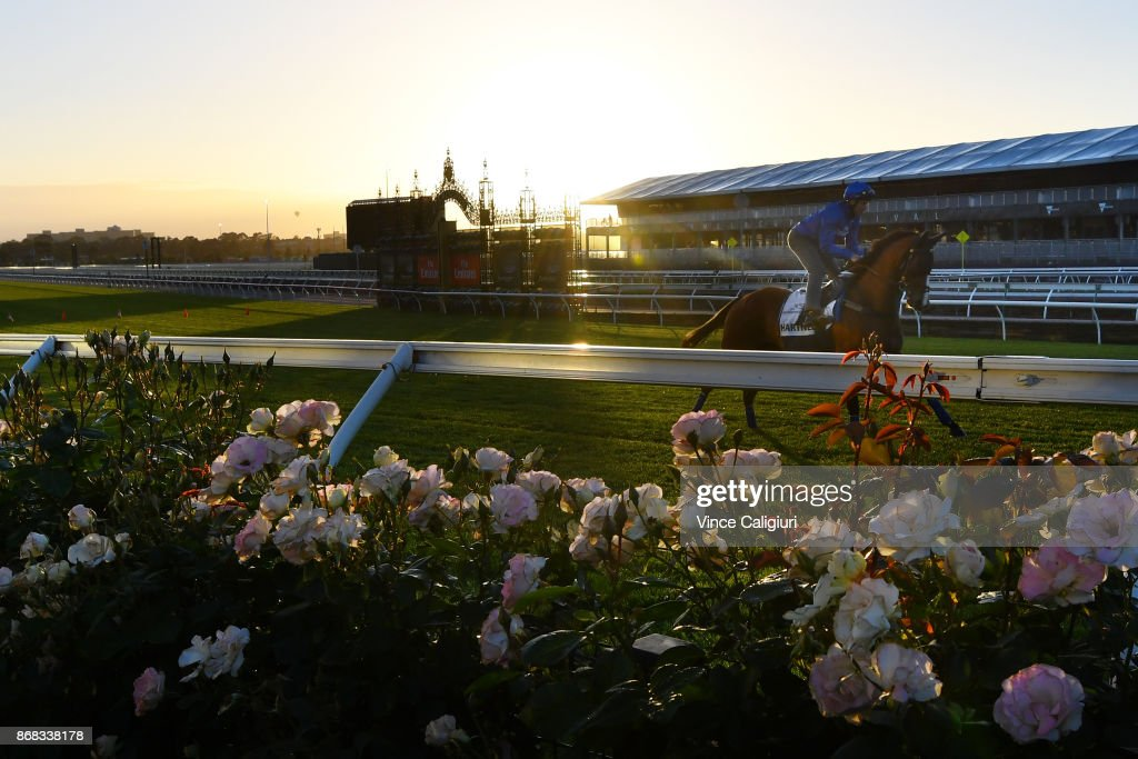 Flemington Trackwork Session