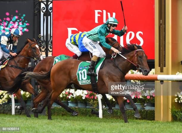 Damian Lane riding Humidor wins Race 8 TAB Australian Cup during Melbourne Racing at Flemington Racecourse on March 11 2017 in Melbourne Australia