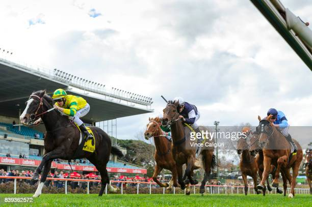 Damian Lane riding Pacodali defeats Ben Melham riding Almandin in Race 5 during Melbourne Racing at Moonee Valley Racecourse on August 26 2017 in...