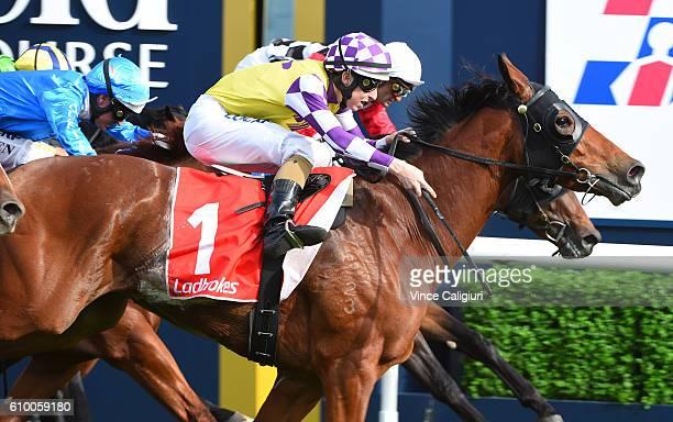 Damian Lane riding Sacred Elixir wins Race 6 Ladbrokes Caulfield Guineas Prelude during Melbourne Racing at Caulfield Racecourse on September 24 2016...