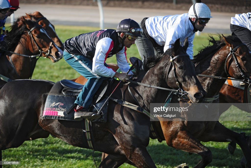 <a gi-track='captionPersonalityLinkClicked' href=/galleries/search?phrase=Damien+Oliver&family=editorial&specificpeople=210504 ng-click='$event.stopPropagation()'>Damien Oliver</a> riding Commanding Jewel and Michael Walker riding Arctic Song (r) compete in an 800 metre barrier trial on the course proper at Flemington Racecourse on August 15, 2014 in Melbourne, Australia.