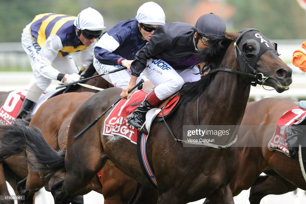 <a gi-track='captionPersonalityLinkClicked' href=/galleries/search?phrase=Damien+Oliver&family=editorial&specificpeople=210504 ng-click='$event.stopPropagation()'>Damien Oliver</a> riding Fiorente wins Race 5, the Carlton Draught Peter Young Stakes during Blue Diamond Stakes Day at Caulfield Racecourse on February 22, 2014 in Melbourne, Australia.