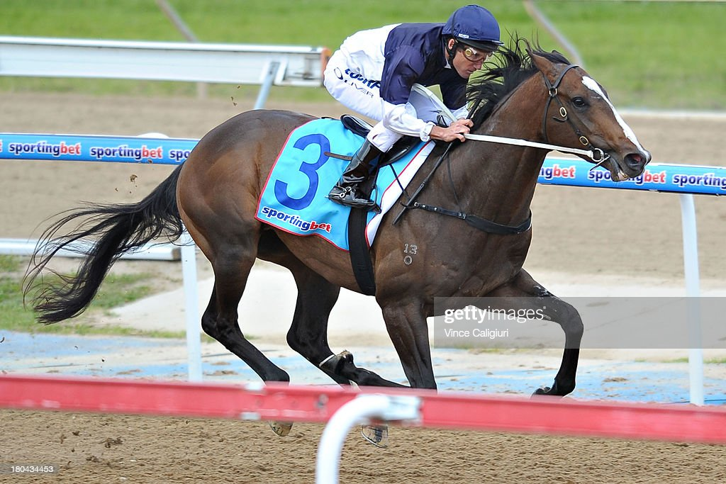 <a gi-track='captionPersonalityLinkClicked' href=/galleries/search?phrase=Damien+Oliver&family=editorial&specificpeople=210504 ng-click='$event.stopPropagation()'>Damien Oliver</a> riding Lion of Belfort wins the Geelong & Surf Coast Limo Bus Maiden Plate during Geelong racing on September 13, 2013 in Geelong, Australia. <a gi-track='captionPersonalityLinkClicked' href=/galleries/search?phrase=Damien+Oliver&family=editorial&specificpeople=210504 ng-click='$event.stopPropagation()'>Damien Oliver</a> returned to race riding today after serving a 10-month ban for betting on a rival horse and rode a winner with his first ride back.