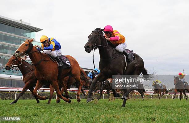 Damien Oliver riding Shiraz defeats Craig Newitt riding Play Master in Race 7 the Auries Star Handicap during Melbourne Racing at Flemington...