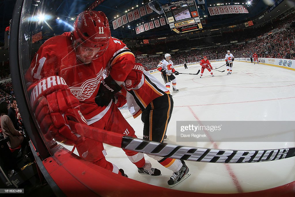 Dan Cleary of the Detroit Red Wings battles for the puck during an NHL game against the Calgary Flames at Joe Louis Arena on February 5 2013 in...
