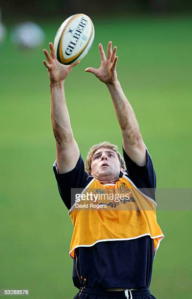 Dan Vickerman catches the ball during the Wallaby training session held at Westerford School on July 26 2005 in Cape Town South Africa
