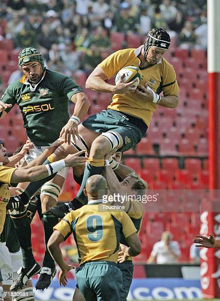 SEPTEMBER 9 Dan Vickerman of the Wallabies wins a lineout during the TriNations match between South Africa and Australia at Ellis Park stadium on...